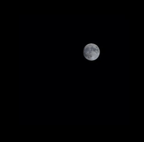 방배3동의 달