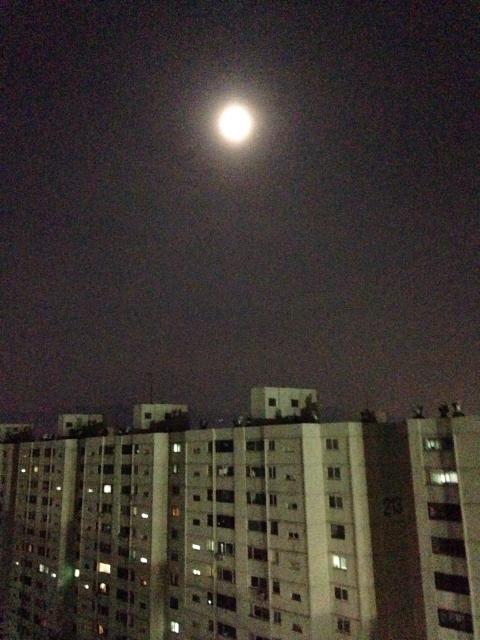 서울의 달