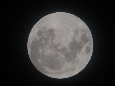 땡그란 달