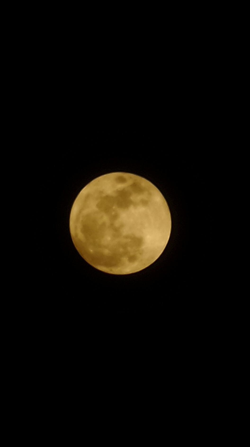 달~달~무슨 달