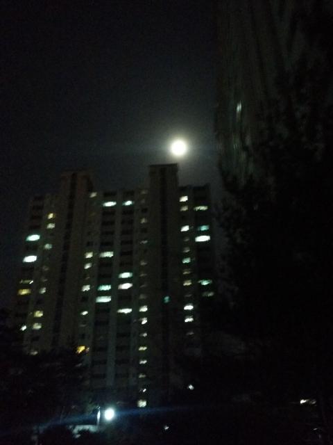 아파트 위에 걸려있는 보름달